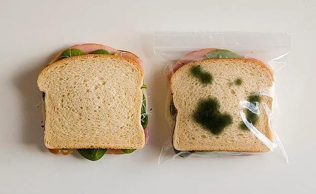 Ambalaj Farkı Küflenmiş Ekmek